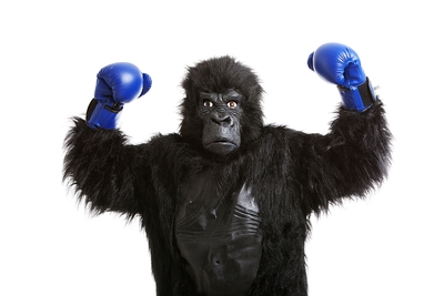 Gorilla Boxing